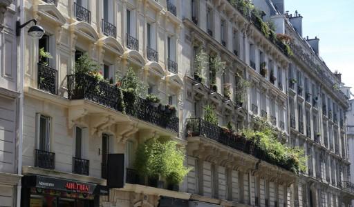 Paris-grün