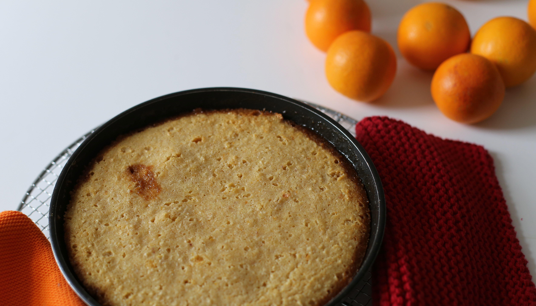 Blutorangen Ricotta Kuchen Kochkultur